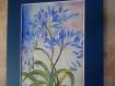 """""""l'agapanthe bleue """" tableau à l'aquarelle"""
