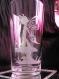 Grand verre gravé elfe sur champignon