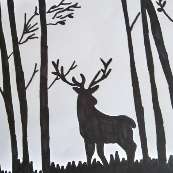 Dessin Cerf Noir Et Blanc Illustrations Dessins Par