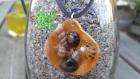 Pendentif coquillages en inscrustation dans de la résine