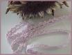 2 mètres dentelle mauve 12 mm coton guipure crochet ruban galon
