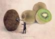 Le coiffeur de kiwi - 13x18 cm - photographie d'art, photographie de fruits, décoration vert, décor mural, décoration cuisine, photographie d'art,