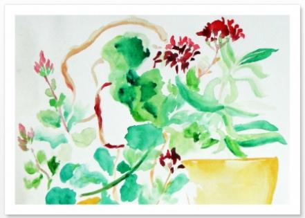 Carte postale a6 fleurs rouges au pot jaune aquarelle