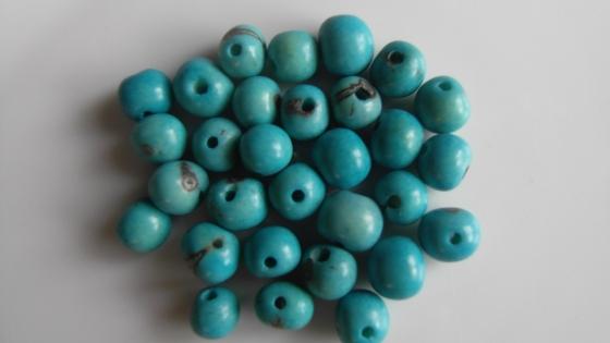 Perle graine açaï bleu pastel (lot de 30 perles)