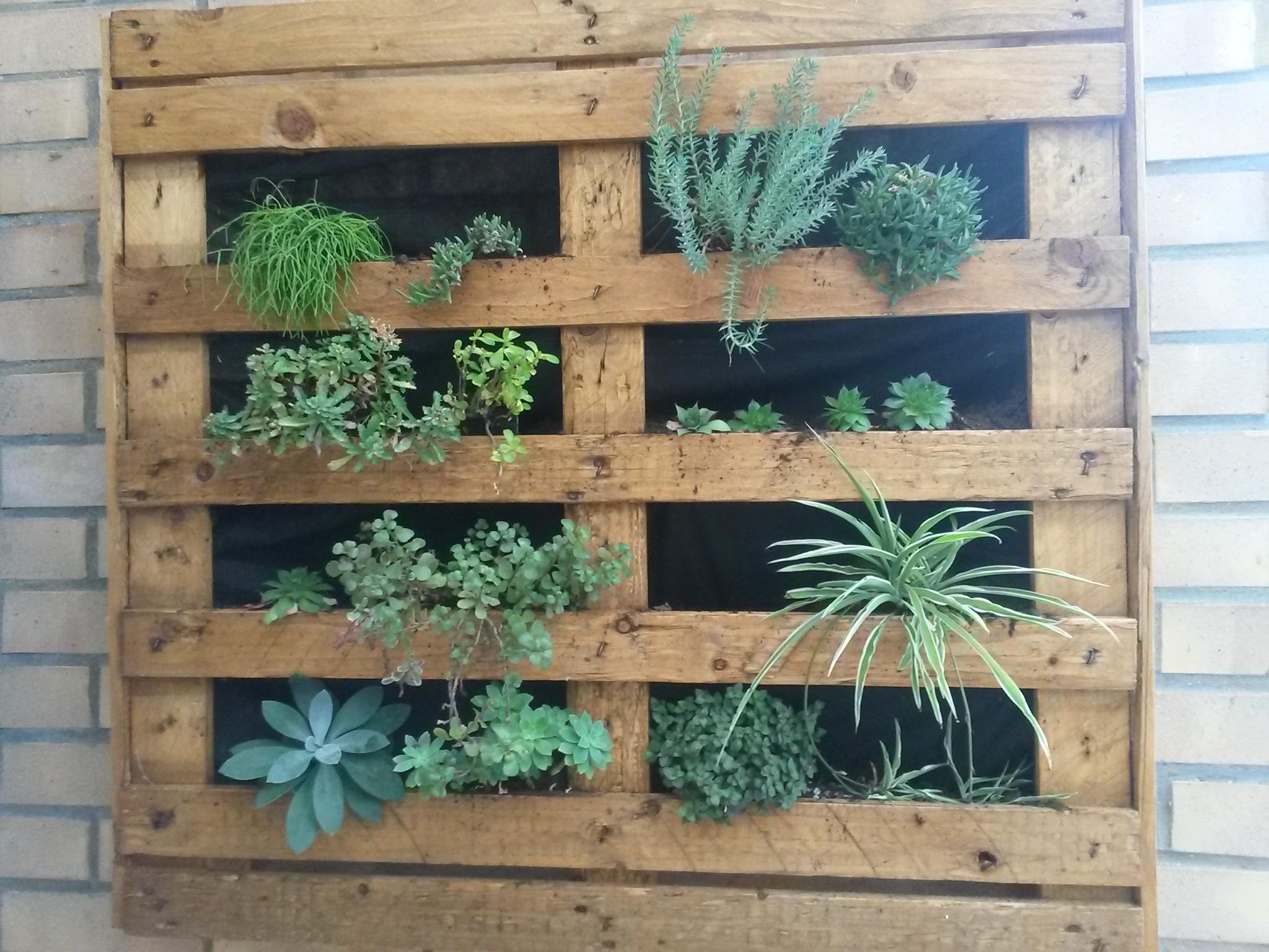 Mur végétal : decoration-murale-maison par valeriewoodpallets