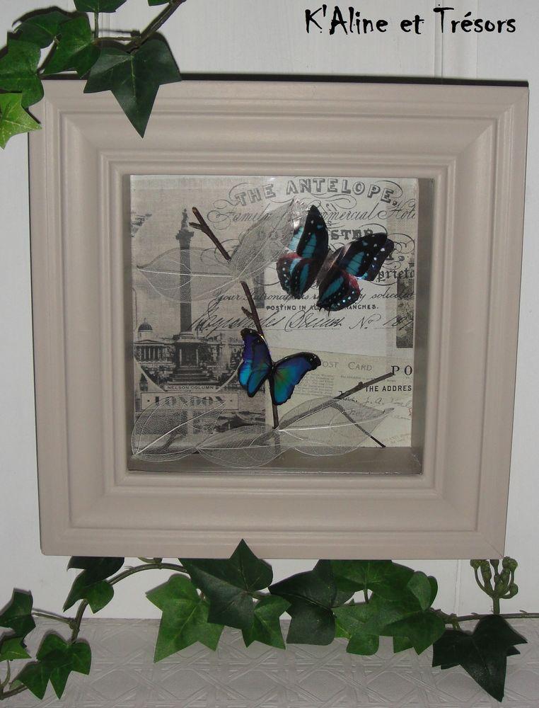 cadre vitrine inspir du cabinet de curiosit s avec papillons 3d bleus sous verre envoi. Black Bedroom Furniture Sets. Home Design Ideas